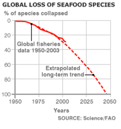 global-loss-of-seafood-species